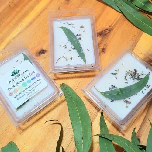 Eucalyptus Tea Tree Soy Melt